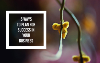 How to Plan for Success - Artist Bethany Fields 5 tips
